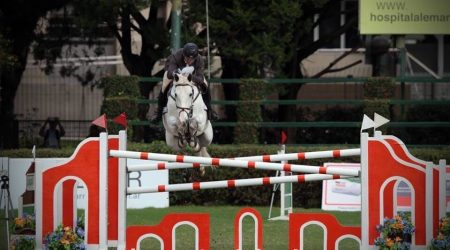 Internationally successful - Qualified for the World Equestrian Games 2014